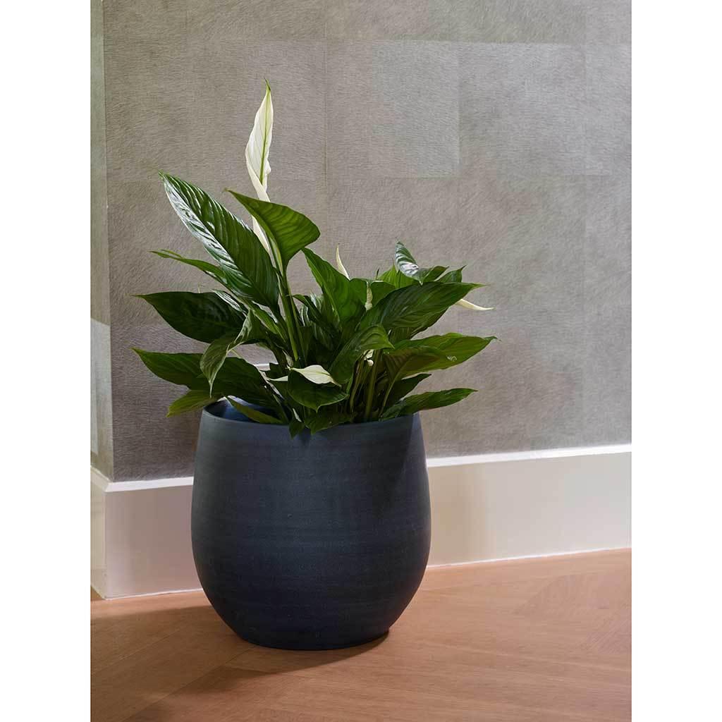 Esra Plant Pot Dark Blue 18 X 16cm Indoor Plant Pots Modern Pot
