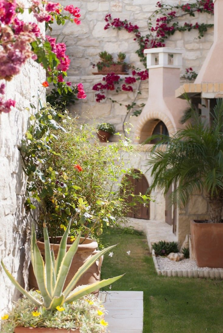 10 Garden Ideas to Steal from Greece | It\'s all Greek to Me ...