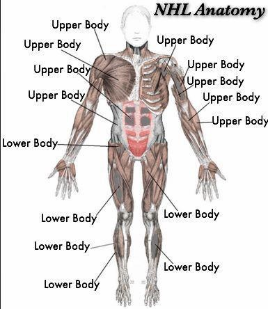 Hahas either an upper body injury or a lower body injury you its either an upper body injury or a lower body injury you get no more information ccuart Gallery