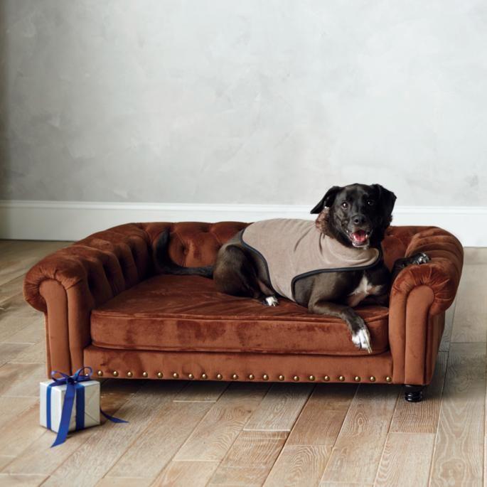 Wentworth Tufted Dog Bed Dog bed, Cool dog beds, Sofa