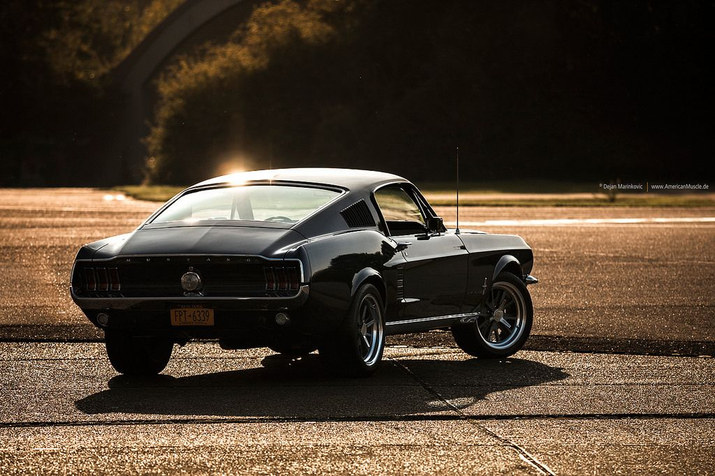 1967 Fastback Ford Mustang Fastback Mustang Fastback Ford Mustang