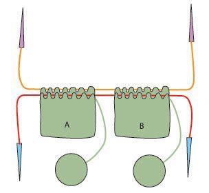 1 circular knitting needle, 2 socks at a time