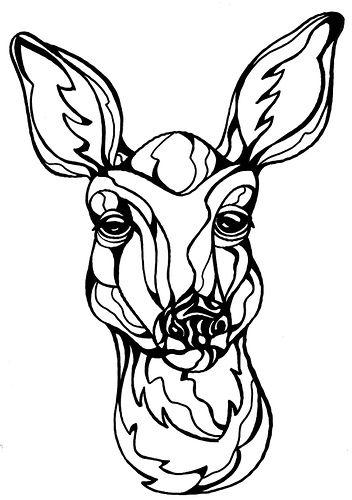 Deer   Dibujos zentangle, Colorear y Doodle