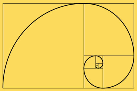 Project 13 The Golden Section Golden Ratio Perfect Teeth Learn Art