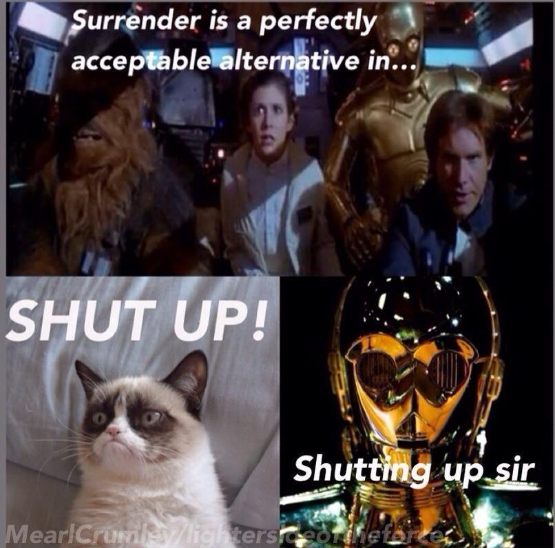 Pin By Mela Corominas On Memes S T U Grumpy Cat Grumpy Cat Humor Star Wars Humor