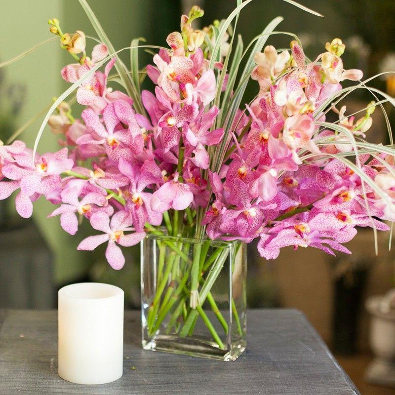 Mokara Orchids by Timeless Blossoms Fresh flower
