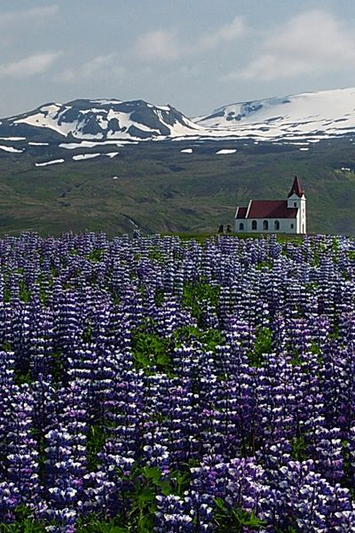 Love scenic drives? Don't miss the Ring Road of Iceland!  Image by Dr. Joseph T. McGinn -- Get travel tips on Iceland's iconic Rt. 1, a loop road that circles the island, at http://www.examiner.com/article/iceland-s-ring-road-holds-natural-wonder-and-creative-inspiration
