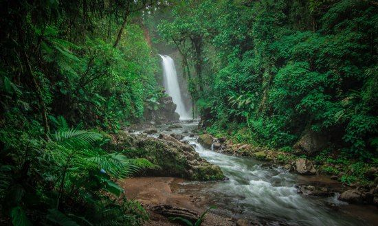 La Paz Waterfall Gardens & Peace Lodge Review