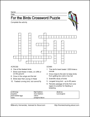 Angry Birds Word Search - Free Word Search Puzzles