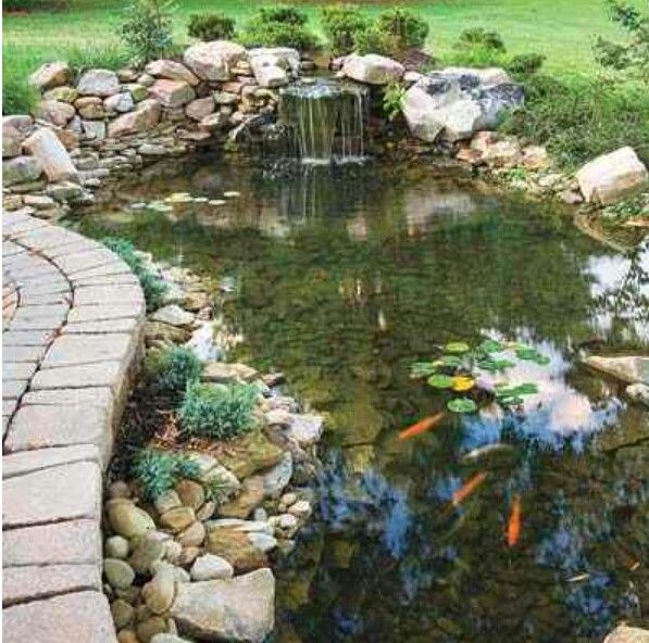 This is just gorgeous the garden garden ideas for Koi pool cue