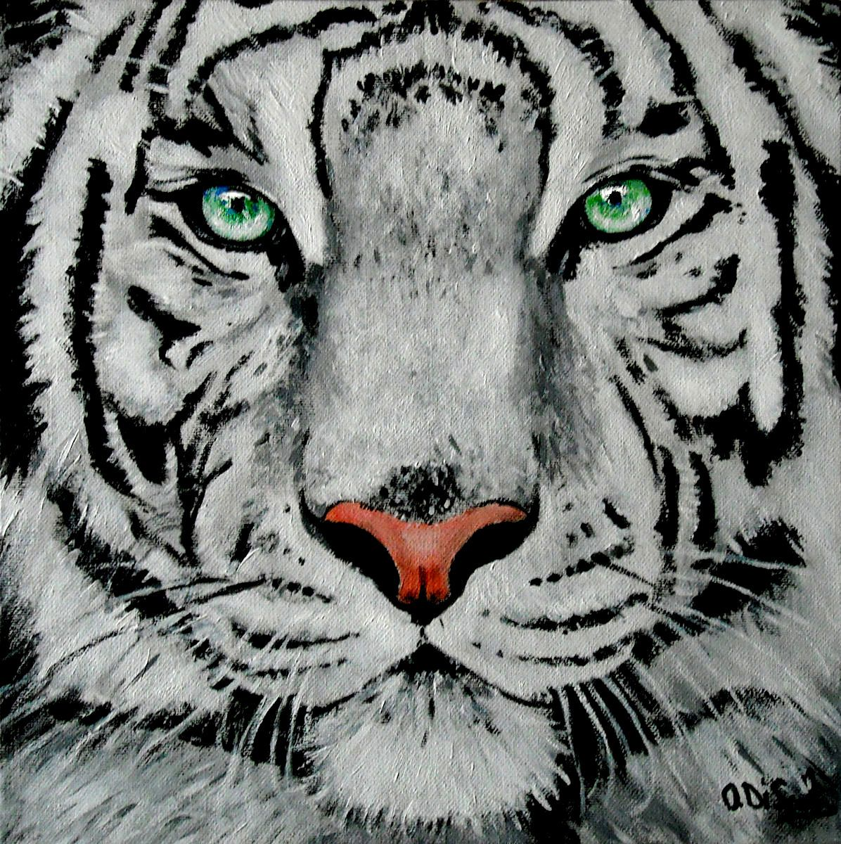 white tiger portrait, acrylic on canvas | animal portrait ...