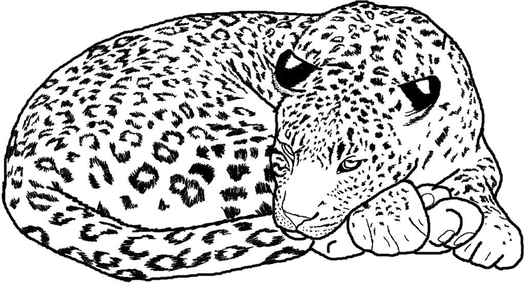 Free Printable Cheetah Coloring Pages For Kids Coloring Pages Coloring Pages For Kids Zoo Animal Coloring Pages
