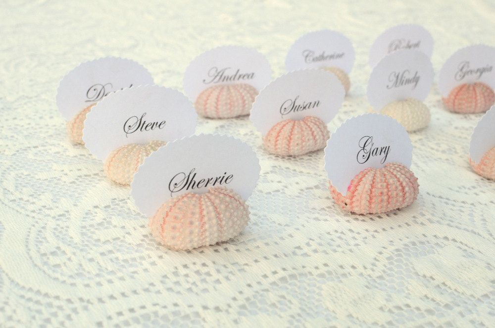 Natural Pink Sea Urchin Place Card Name Holders
