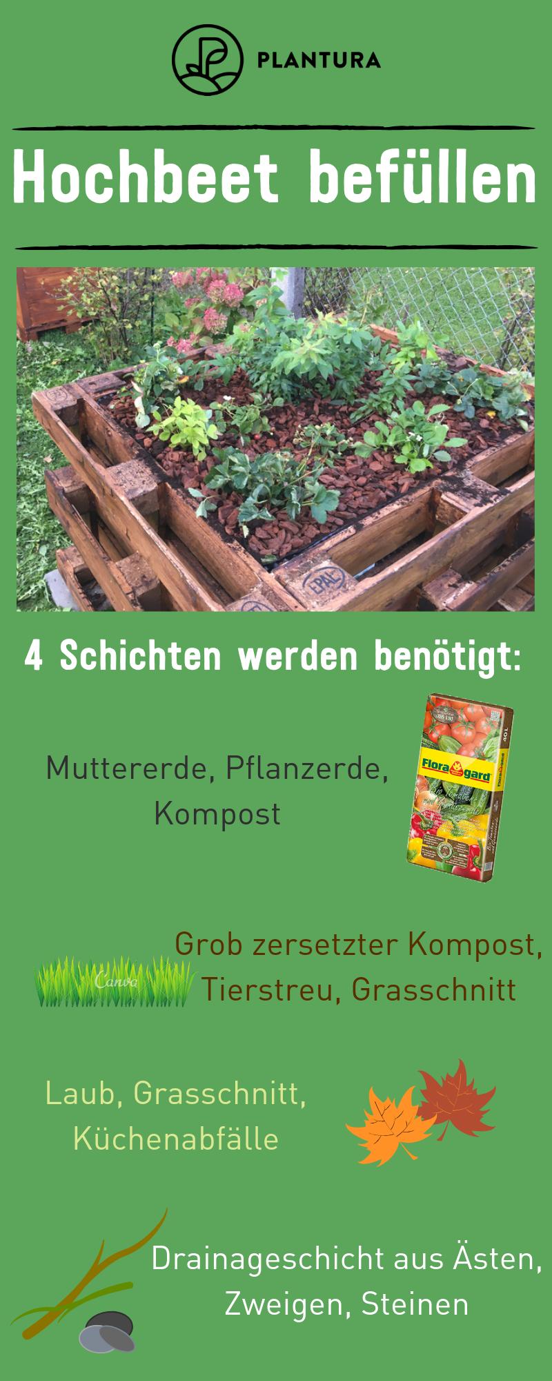 Hochbeet Befullen Tipps Zum Schichten Fullen Plantura Hochbeet Hochbeet Befullen Nutzgarten Anlegen