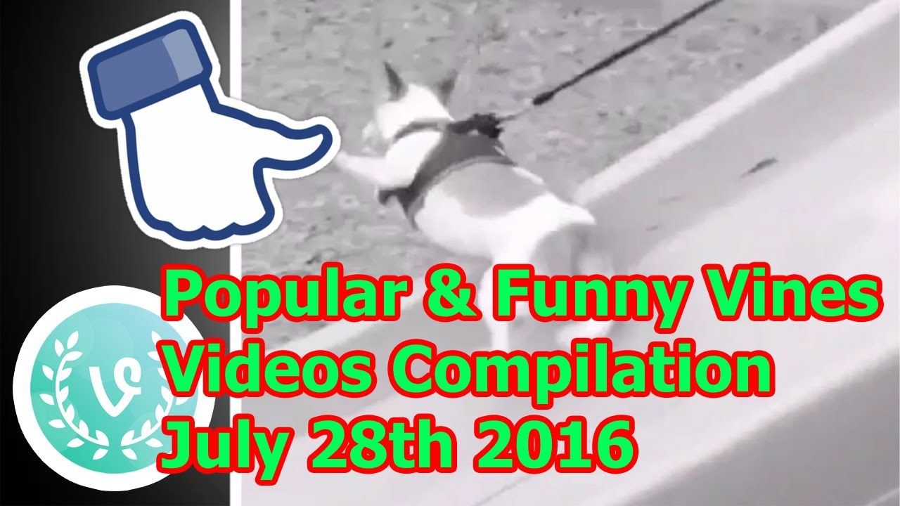 Popular & Funny Vines Videos Compilation July 28th 2016