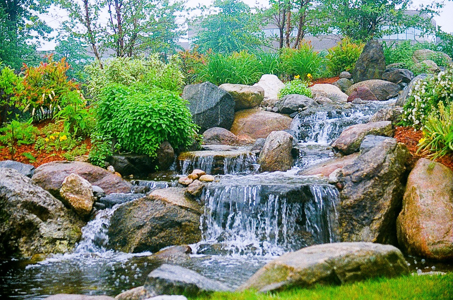 Landscape design dana landscaping water gardens for Traditional landscape