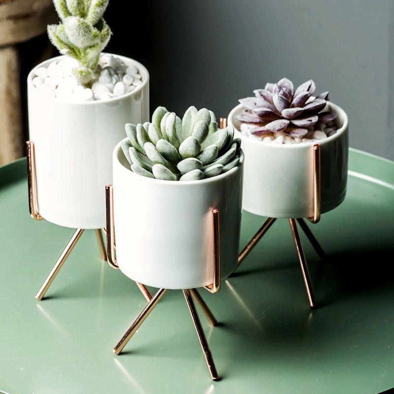 Metal Rack Ceramic Succulent Plant Cactus Holder Nordic Style Wall Hanging+Pot