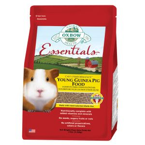 Pin on Guinea pig supplies