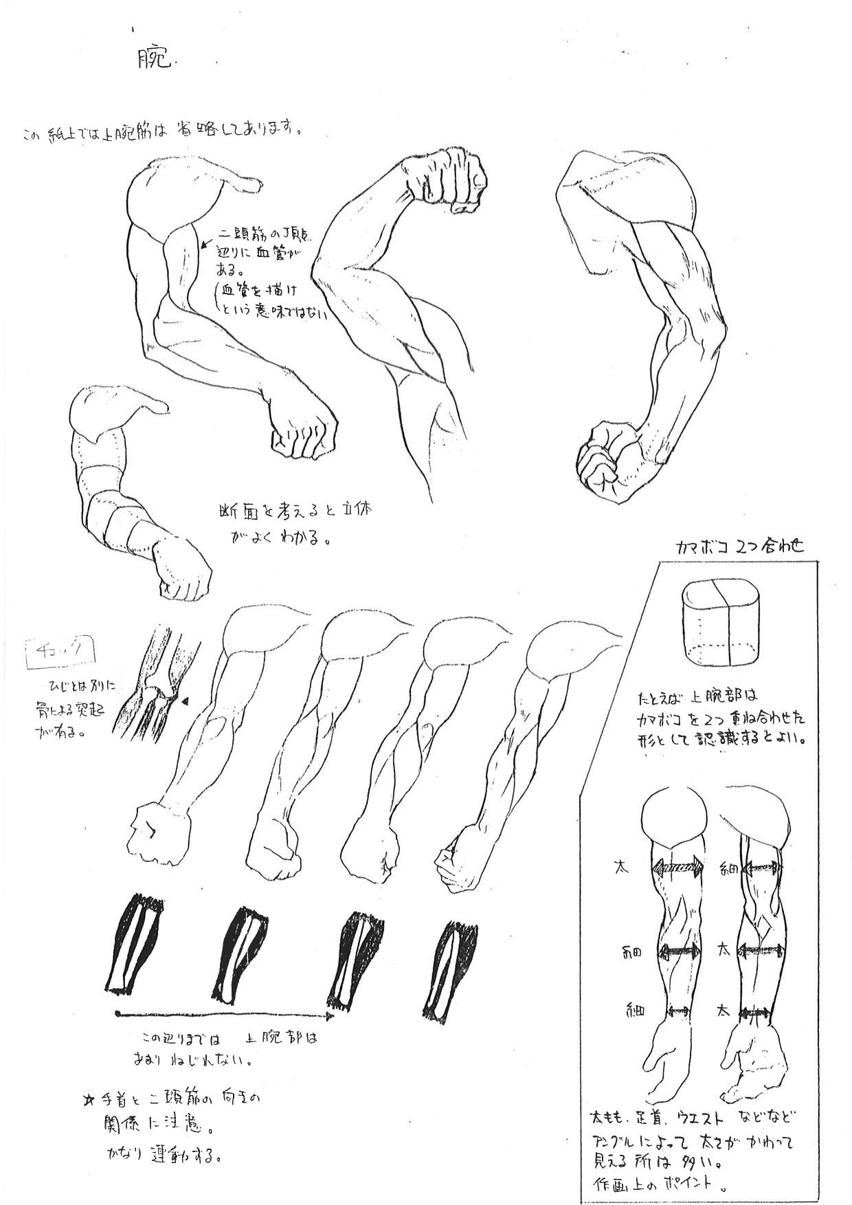 Capcom\'s Human Anatomical Reference For Artists | Characters ...