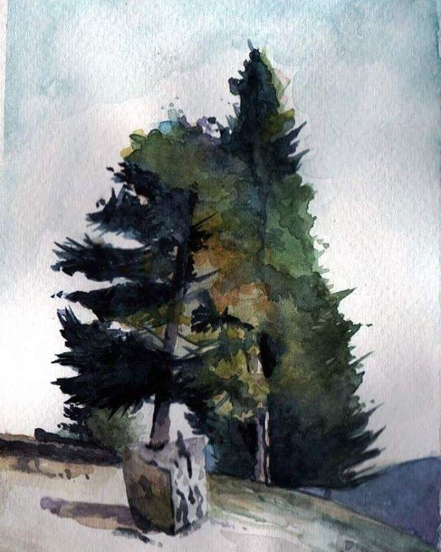 Trabajo en el taller #acuarela #dibujos #naturaleza #arboles #paisaje #pinturas #watercolors