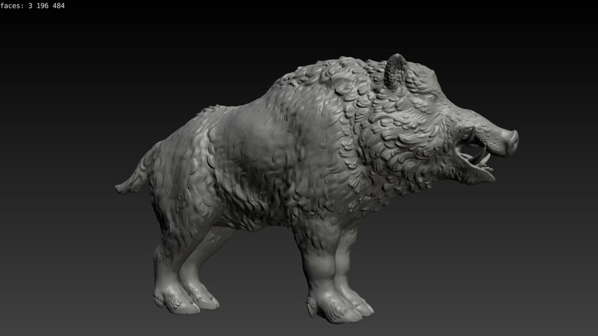 Boar 3D Model Download Royalty Free Animal 3D Models