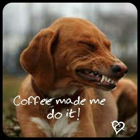 Coffee made me do it