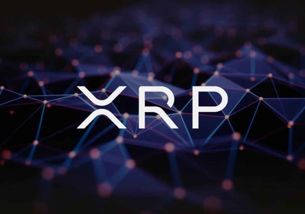 Does Almost Every Bank In Japan Accept Ripple And Xrp Ceo Responds To Viral Video Cryptocurrency Ripple Bitcoin