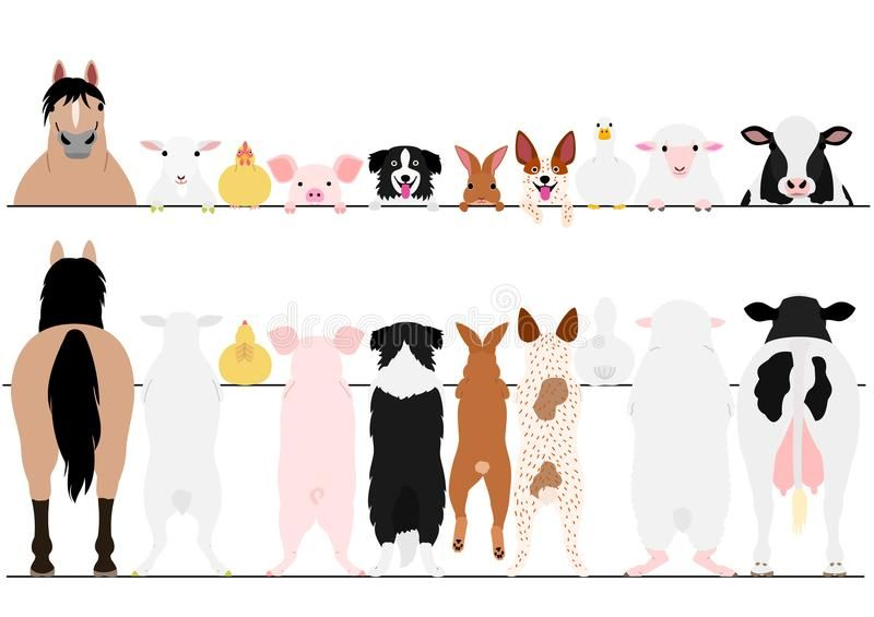 Standing Farm Animals Front And Back Border Set Standing Farm Animals In A Row Affiliate Animals Farm Farm Animals Farm Vector Animals Black And White
