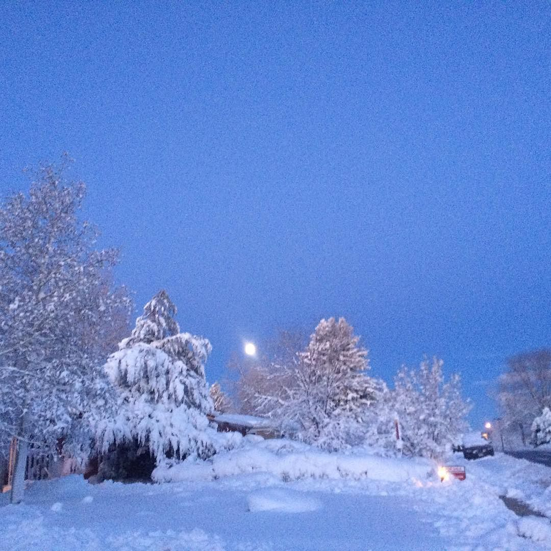 After snow #Denver #colorado #blizzard2016 #beautiful #snow #moon #dawn #sunrise by babel.33