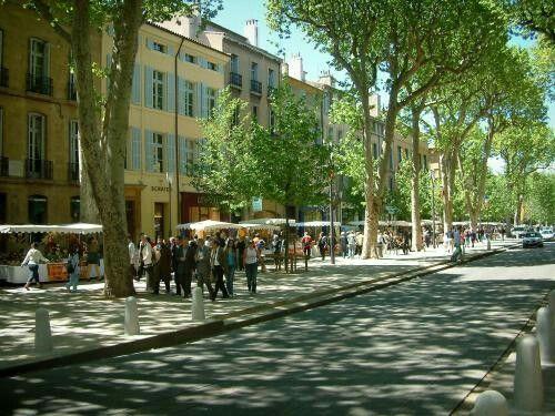 Platanes du Cours Mirabeau (Aix-en-Provence) - Ankryan Photos