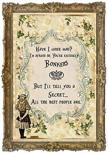 Alice Wonderland Quotes Have Gone Mad Wallpaper Asks Has