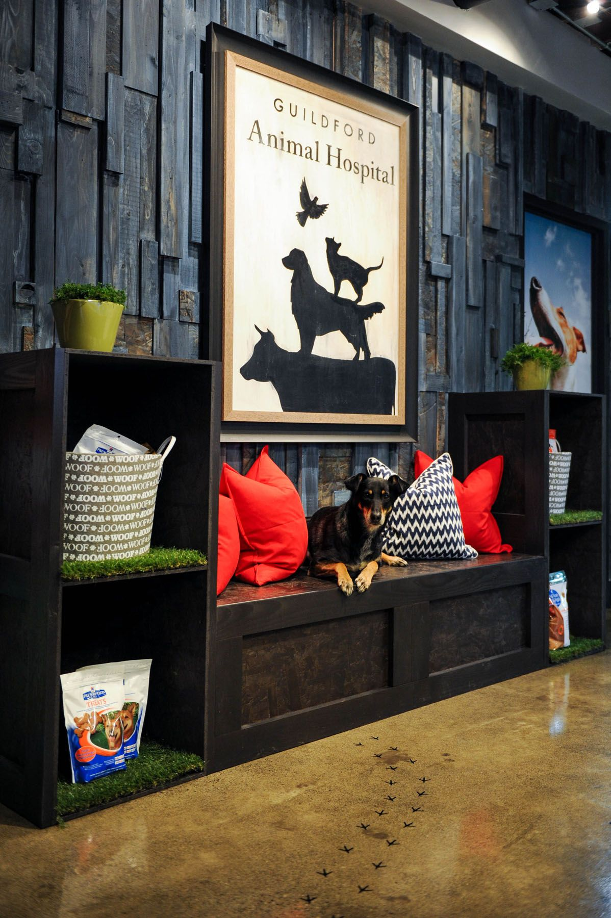 Interior design find this pin and more on veterinary clinic design ideas