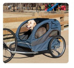 Maybe someday Weasley and I can go for a ride like this!