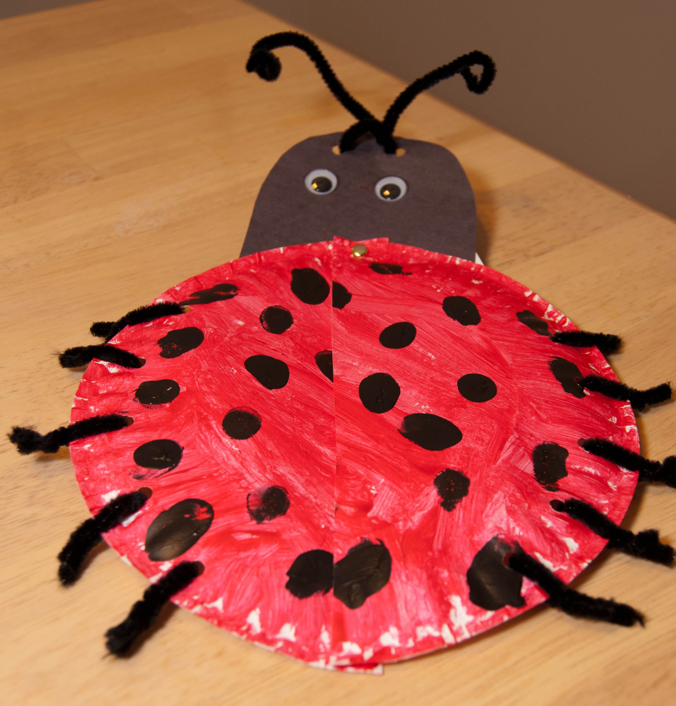 Grouchy Lady Bug Add Circle In Middle On Backside Where