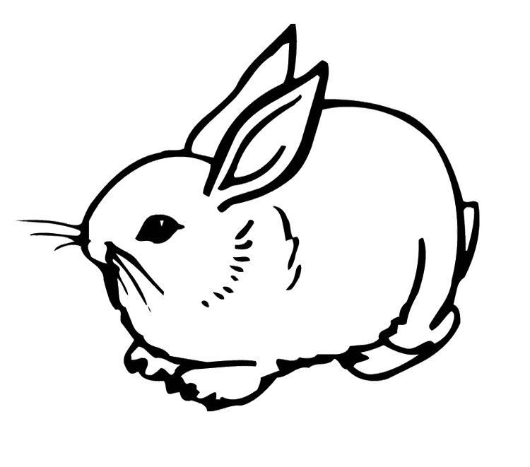 Cute Rabbit Coloring Page Bunny Coloring Pages Animal Coloring Pages Cartoon Coloring Pages