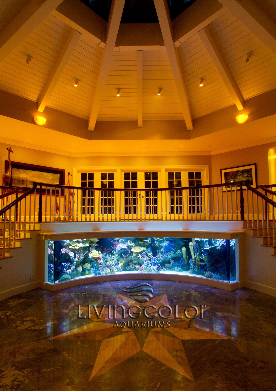 Fish aquarium manufacturers - Because Nobody S Staircase Should Be Boring Custom Acrylic Aquarium By Living Color