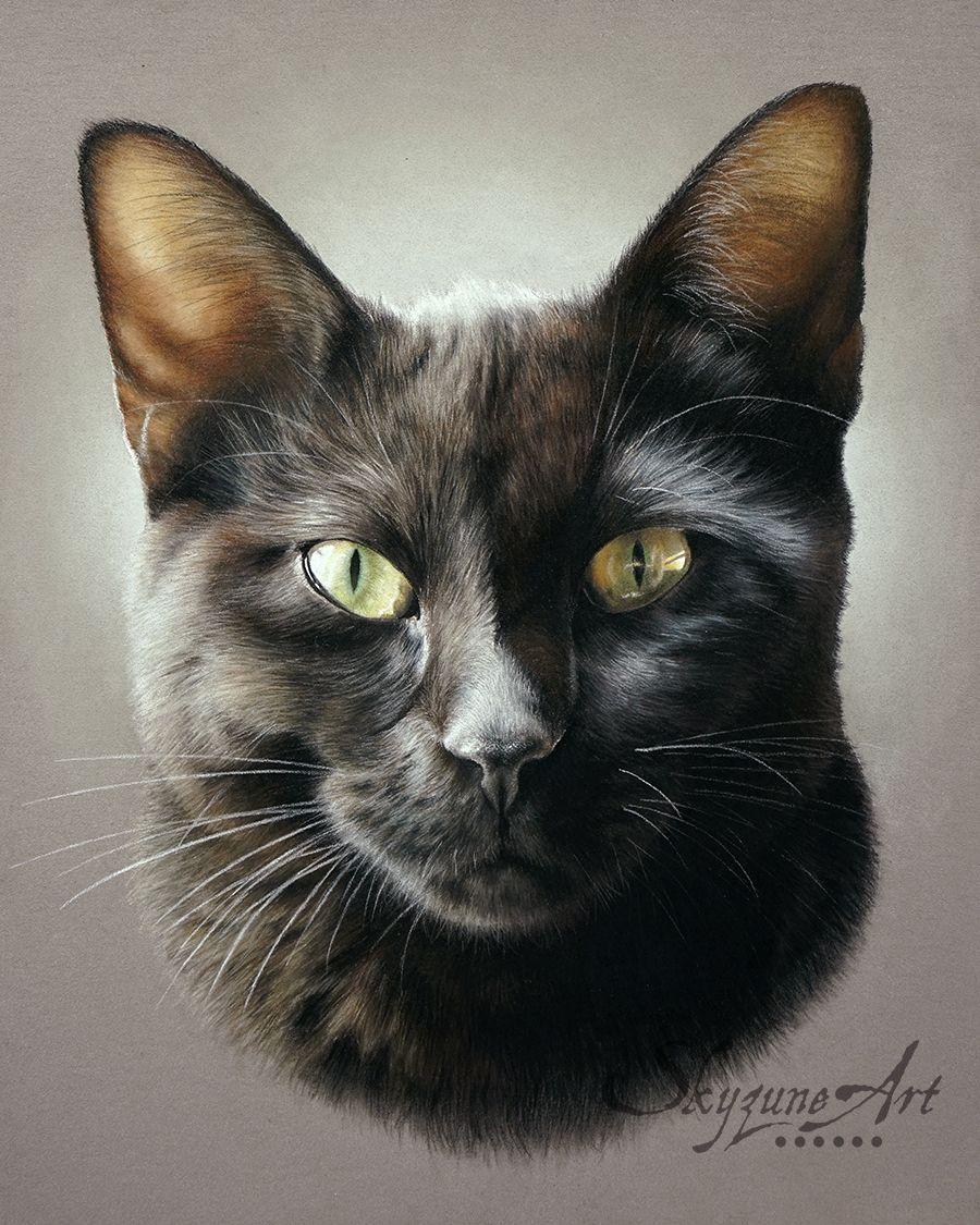 Galerie Artiste Animalier Skyzune Art Peinture Et Pastel Peinture De Chat Noir Art De Chat Noir Et Illustration De Chat