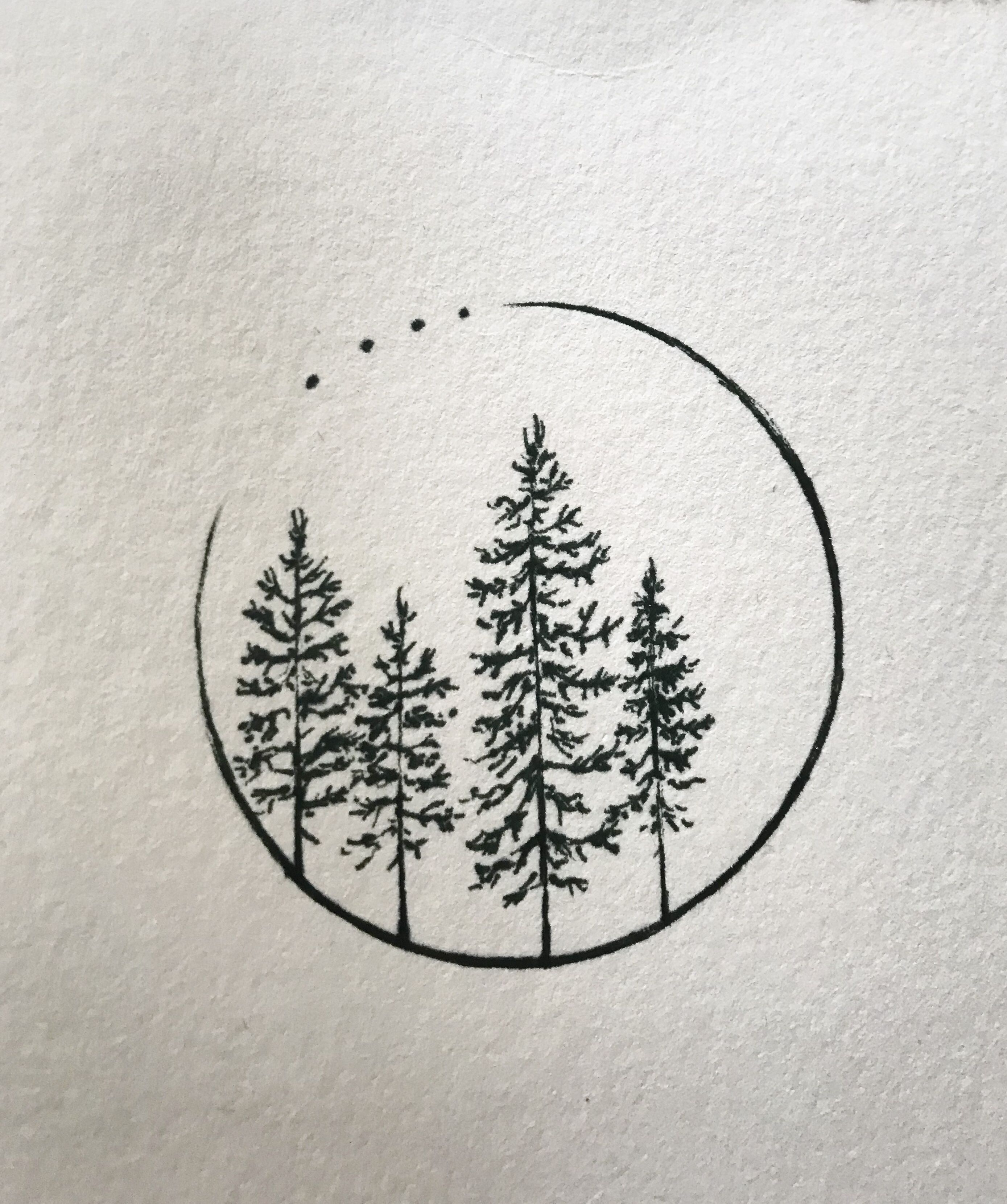 Photo of four firs with circle and points