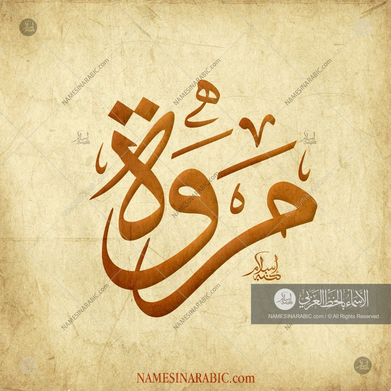 Marwah مروة Names In Arabic Calligraphy Name 2790 Calligraphy Name Islamic Art Calligraphy Arabic Calligraphy Art