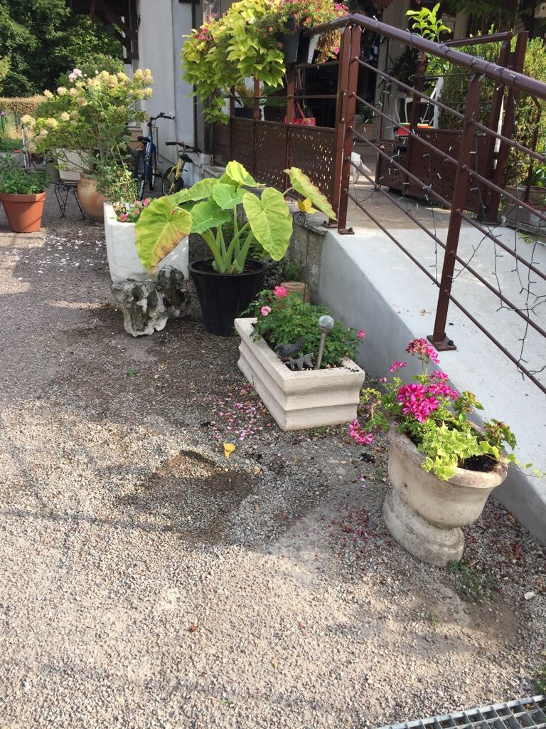 26 idees de vasques de jardin en pierre