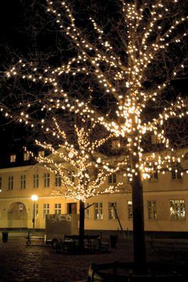 Hvis man vil være med til at støtte julebelysningen i Køge så kan man deltage i bankospillet i Ravnsborghallen.