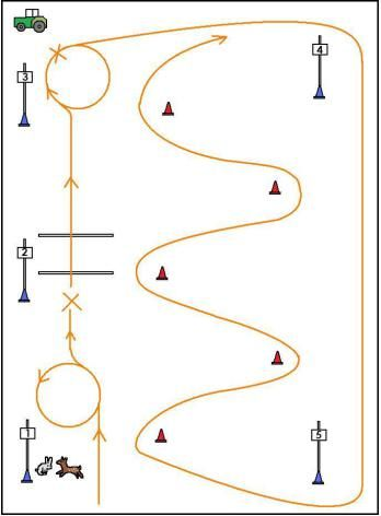 outdoor trail\u201d lesson plan 1 therapeutic riding lesson planstrail riding lesson in the ring