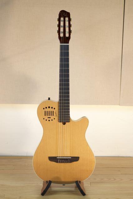 Pro Audio Recording Studio And Musical Equipment Guitar Design Duet Guitar