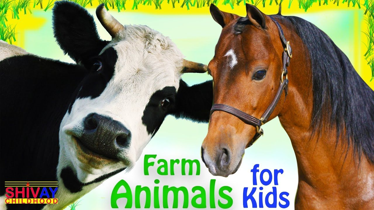 Learning Farm Animals names for Kids Learning Animals