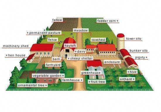 28 Farm Layout Design Ideas to Inspire Your Homestead ...