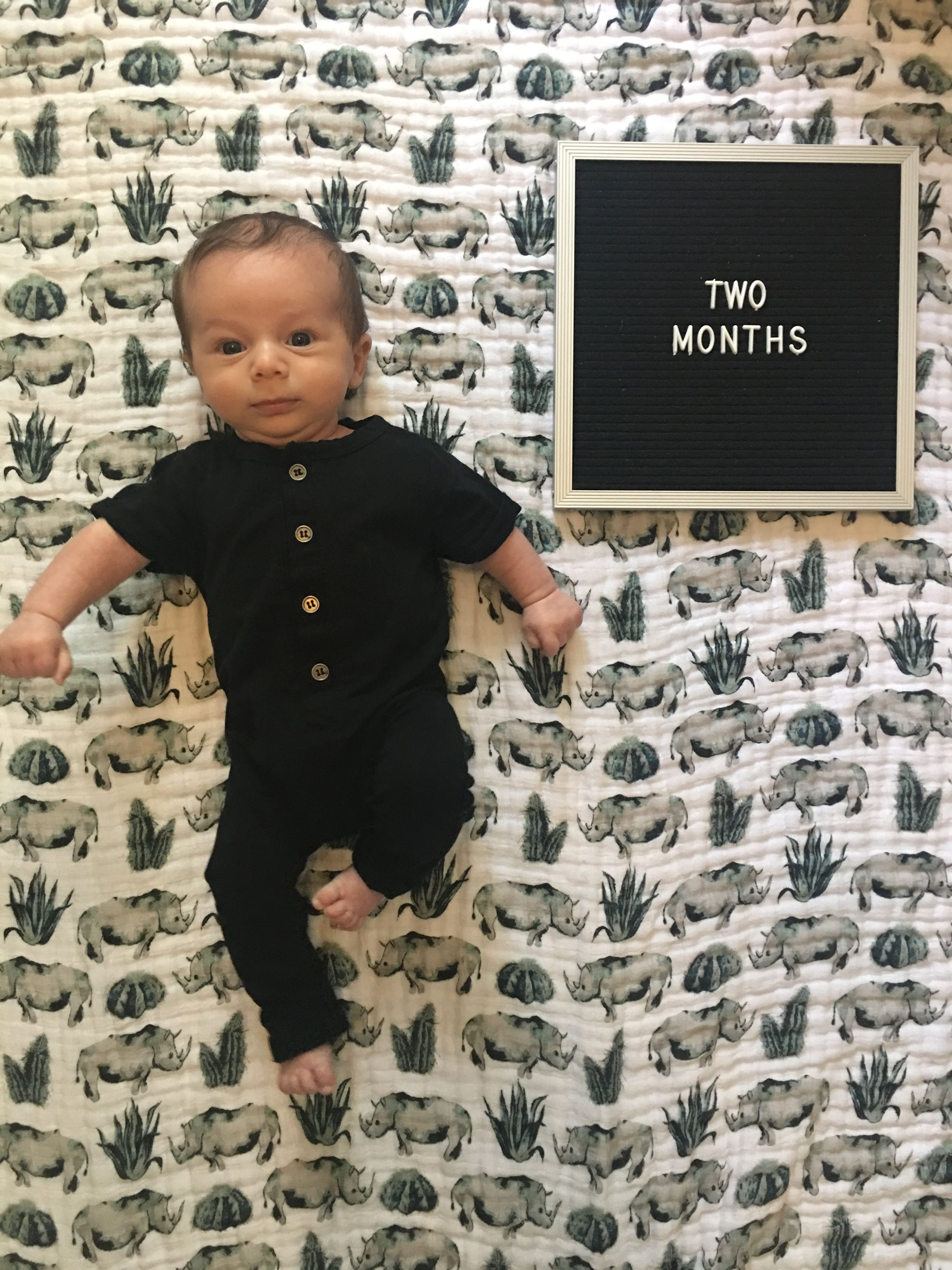 2 Months old pic with letterboard sign littlebipsy Baby