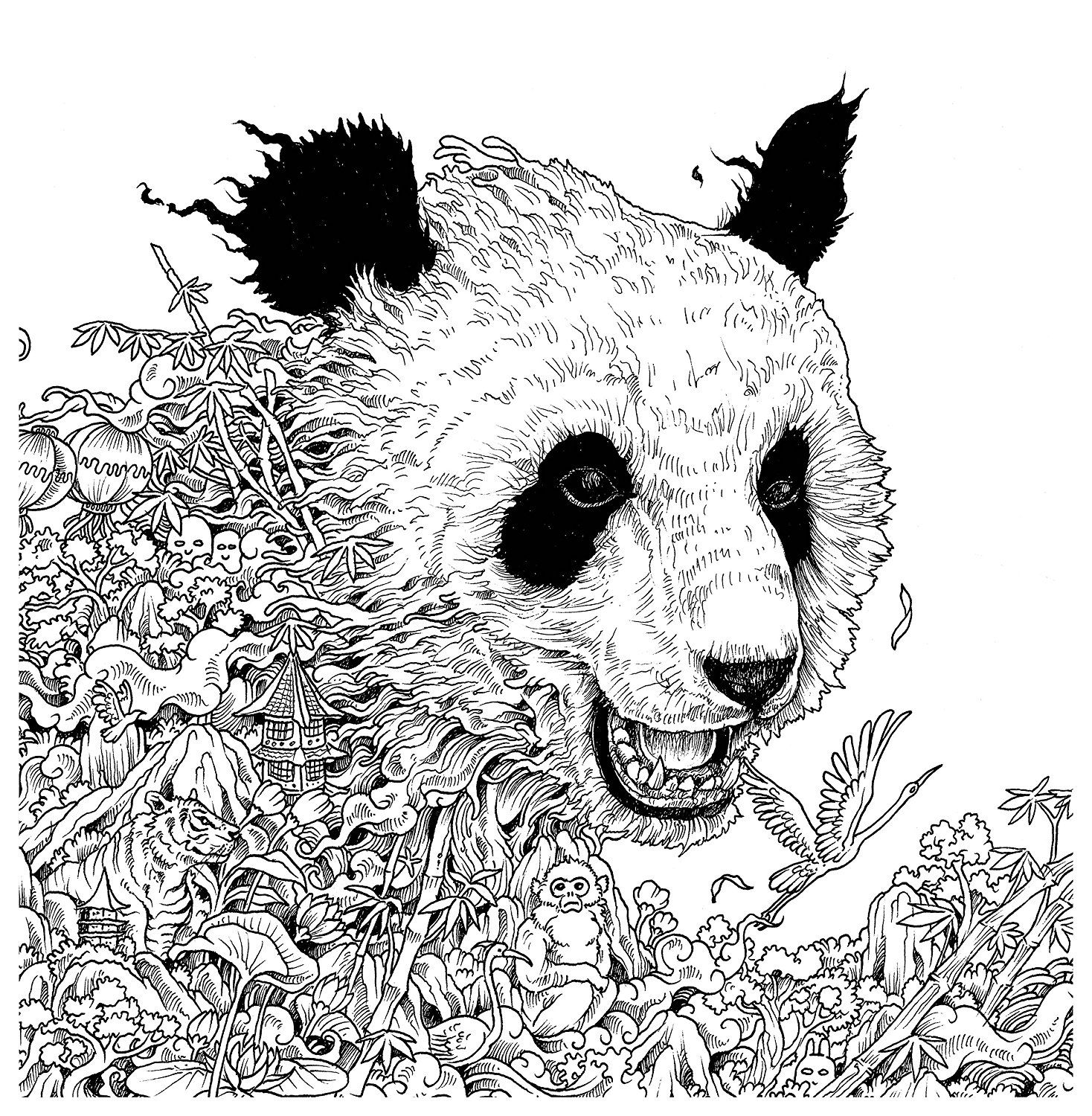 Imagimorphia: An Extreme Coloring and Search Challenge | Malvorlagen ...