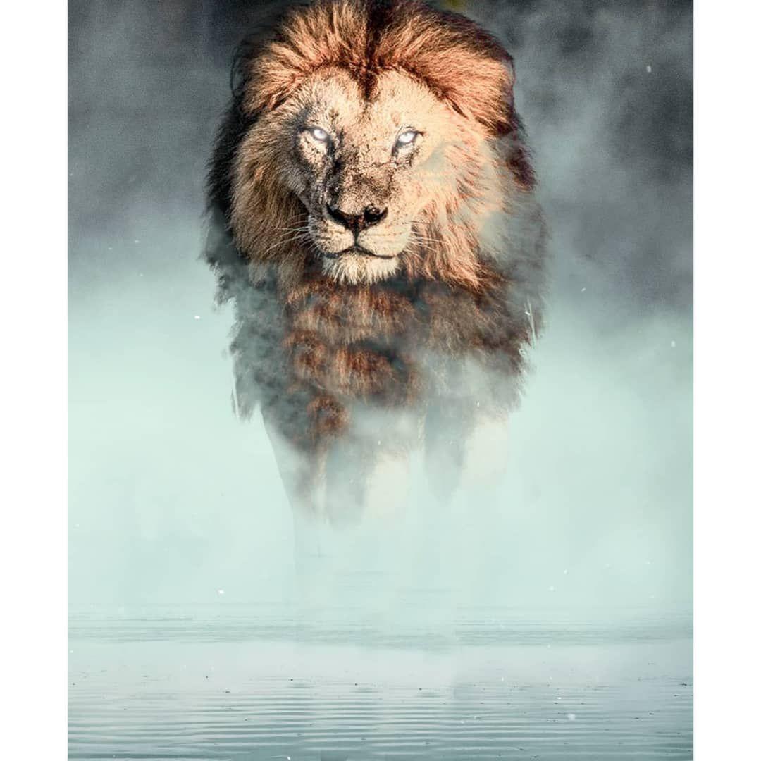 100 Picsart Background Hd Download Love Background Images Best