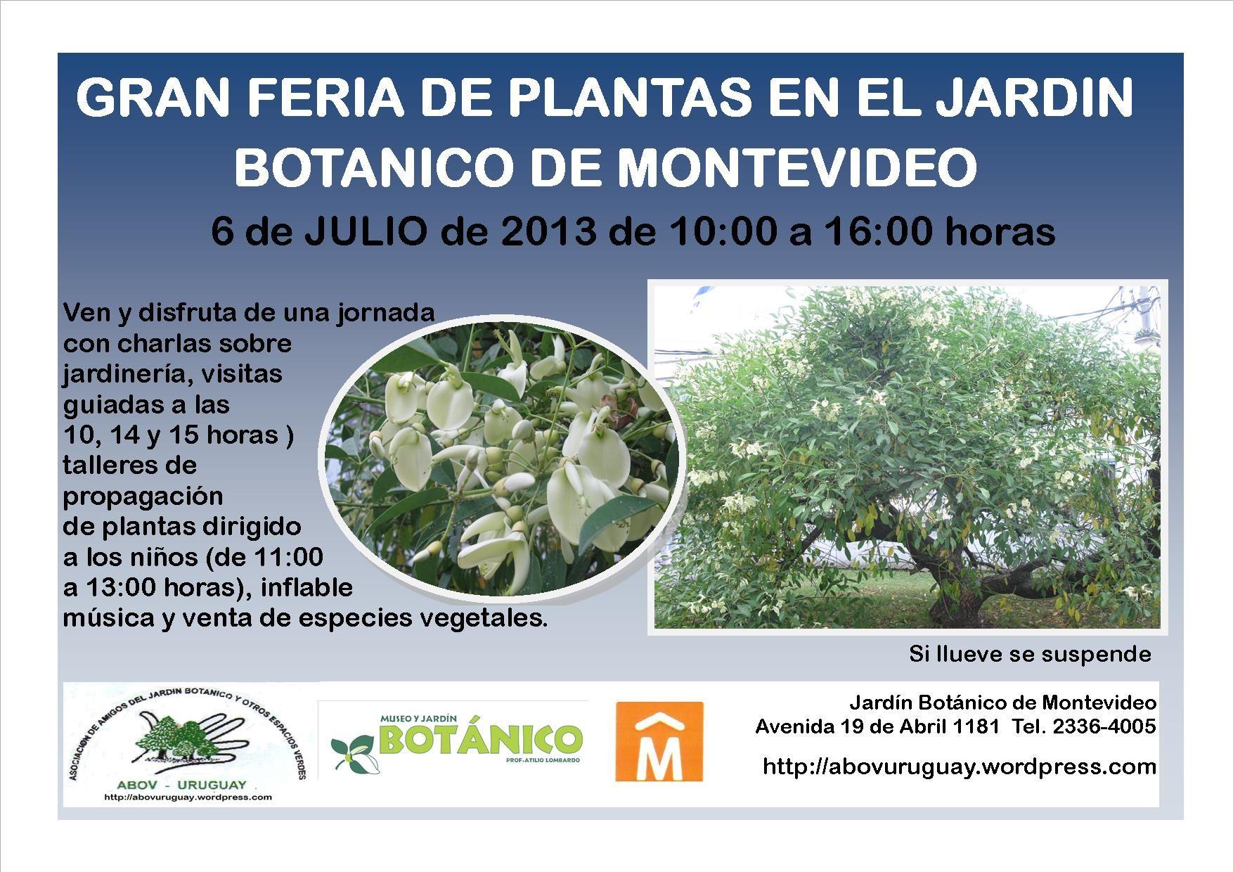 Imagen relacionada Propagación de plantas, Jardinería