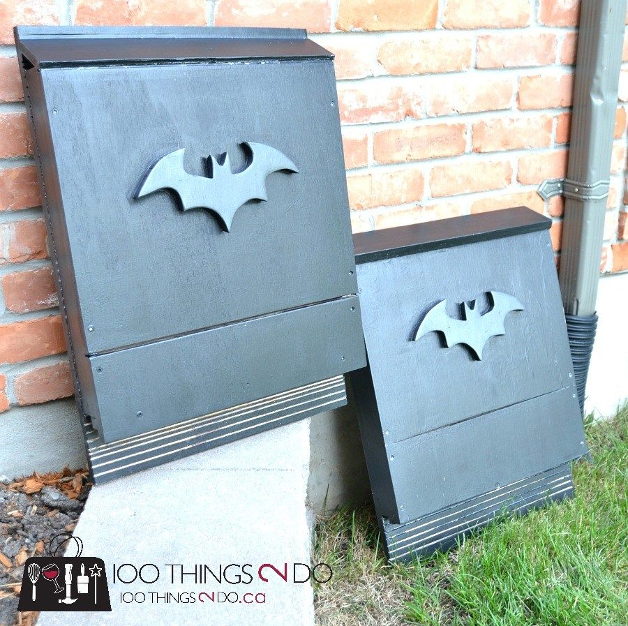 DIY bat box Bat box, Bat house plans, Bird house kits